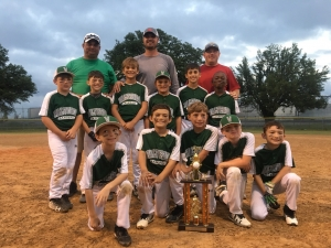 3rd Grade Baseball finishes as Runner-Up
